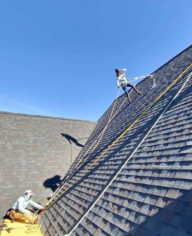 Jenny Roof.jpg